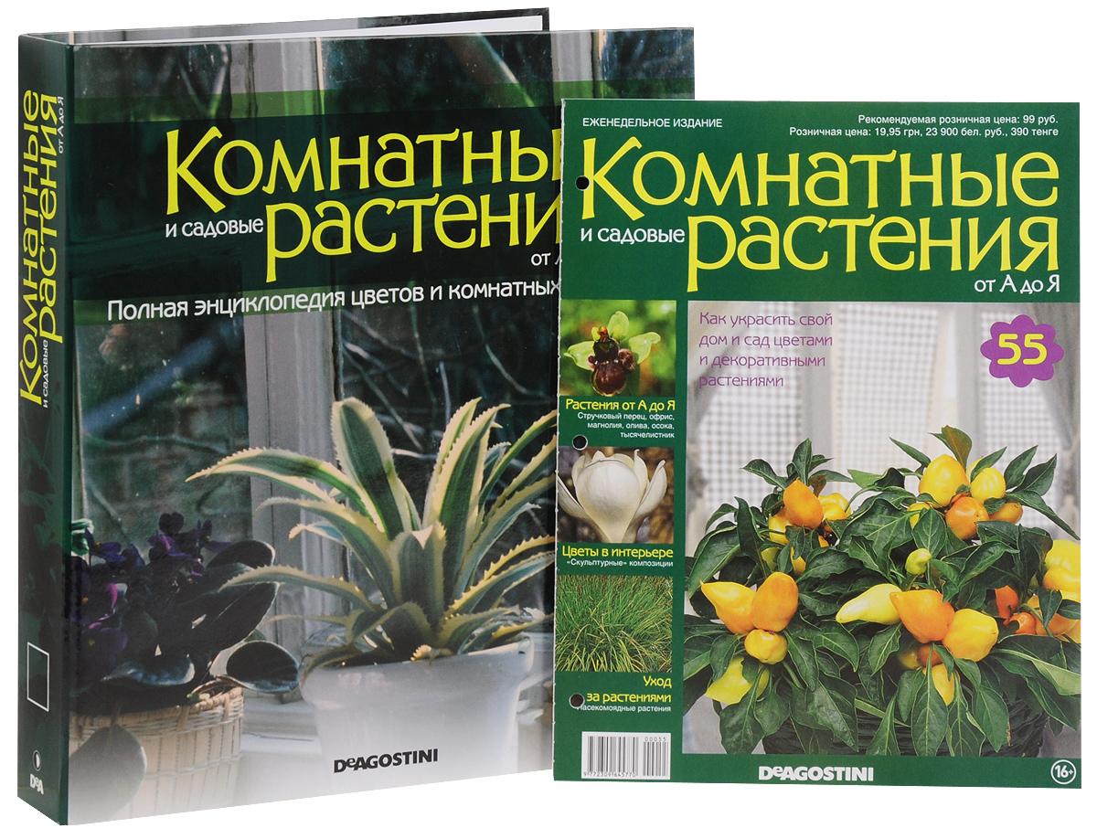 Комнатный цветы энциклопедия в картинках