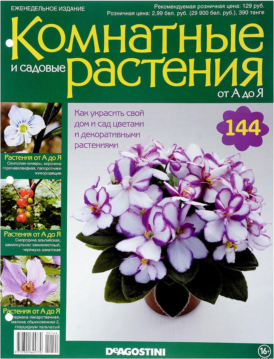 Цветы садовые и комнатные купить ромашки голубые живые цветы купить